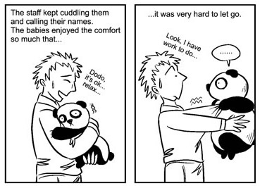 Panda cartoon sample